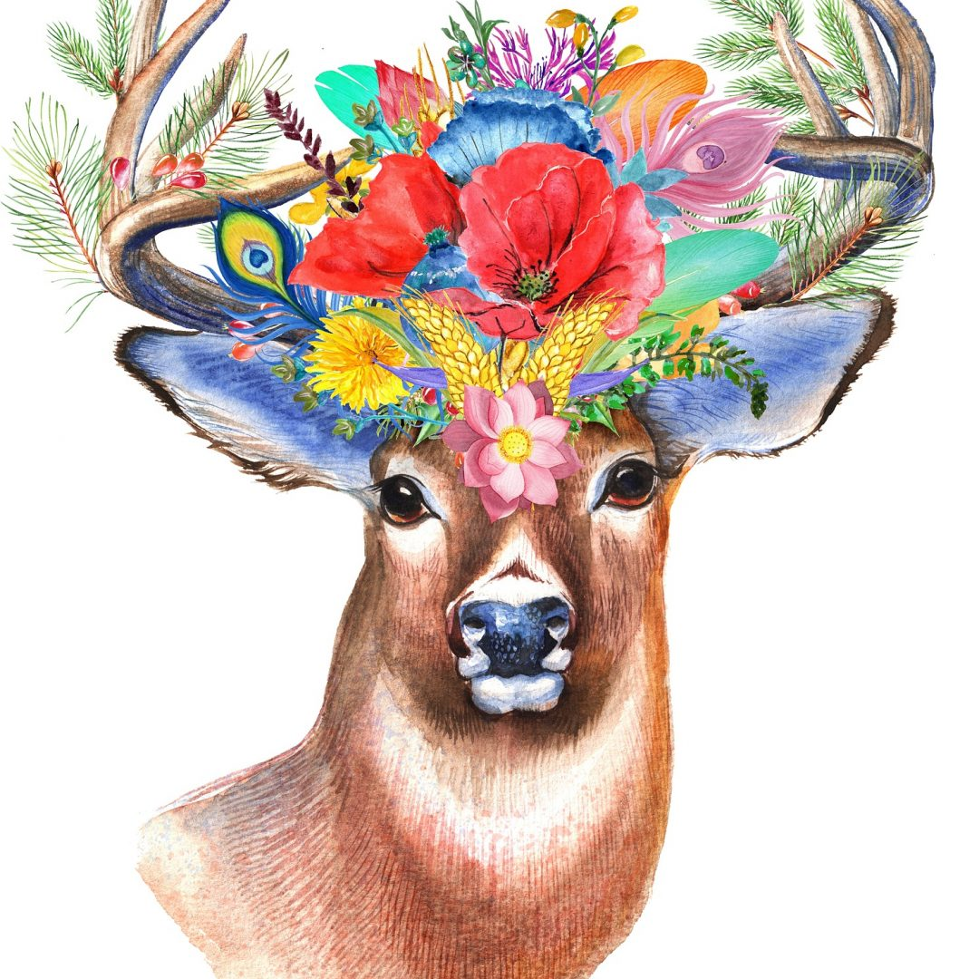 stag with flower crown